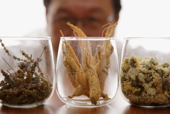 El Ginseng como recurso antiobesidad